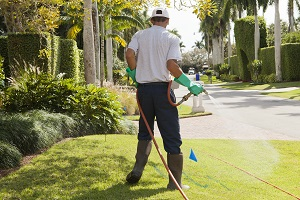 Experienced Apopka Lawn Fertilization Professionals